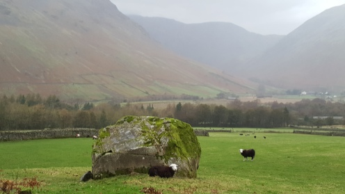 Sheep and boulders and compasses in Wasdale.